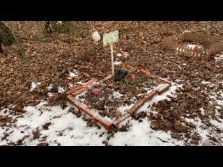 Кладбище домашних животных в Рыбновском раионе