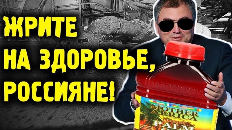 КТО ТРАВИТ РОССИЯН пальмовым маслом | Жизнь в России