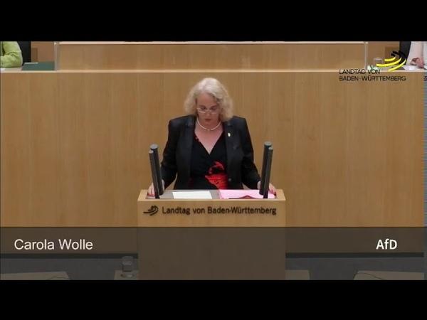 Baden Württembergs Altparteien zeigen offen iher Symphatie zum Linksextremismus