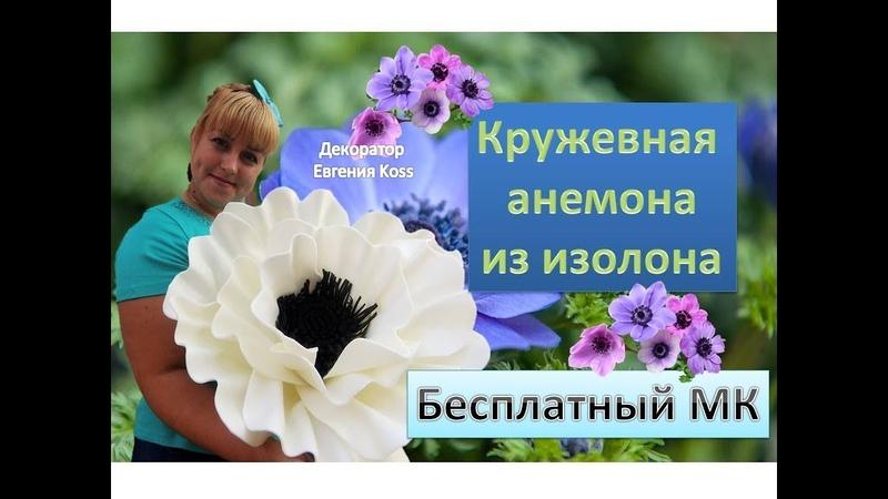 МК Ростовые цветы Кружевная анемона из изолона Lace anemone of isolon eva