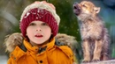 Волчонок жалобно скулил и карабкался по склону. Мальчик пришел на выручку, а вскоре произошло