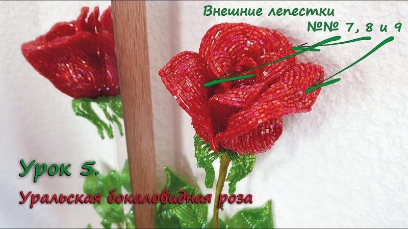 Бокаловидная роза 🌹 Урок 5 Внешние лепестки Cup shaped rose Lesson 5 Outer petals