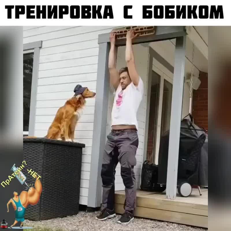 Бобик утяжелитель