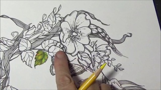 Coloring Vibrant Leaves And Flowers Extreme Coloring With Lisa Brando Prismacolor