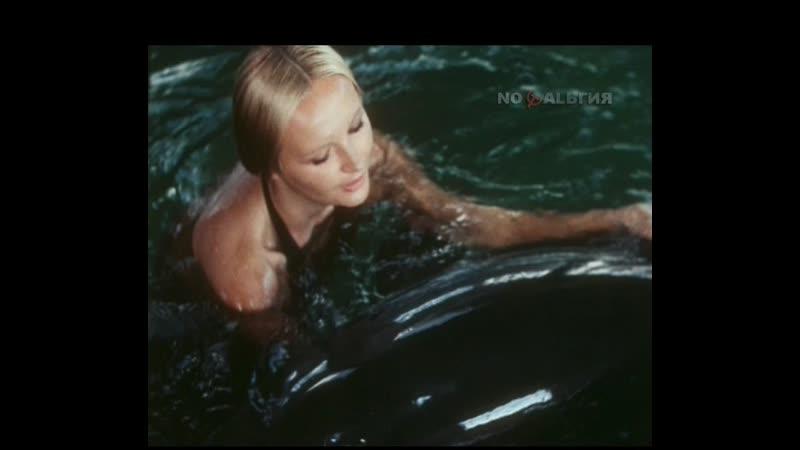 Люди и дельфины 1983 1984 1 серия