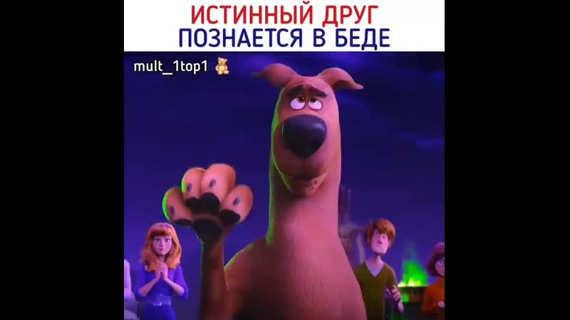 Скуби-ду💔