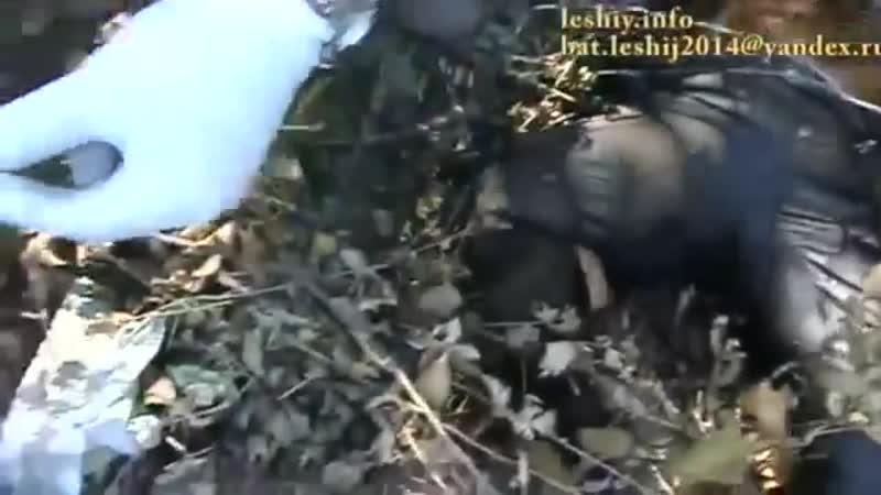 Сентябрь 2014. Луганск. Спецбатальон Леший показал зверства баталона Айдар