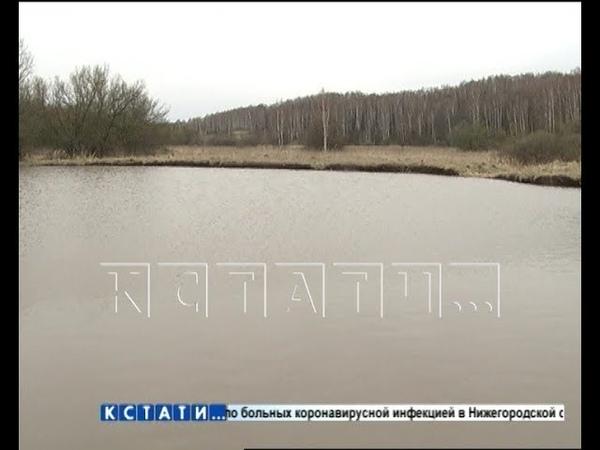 Вместо карстового провала в Арзамасском районе появилось озеро