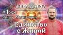 Владимир Куровский. Жива-Медитации. 1ЖМ. Единство с Живой
