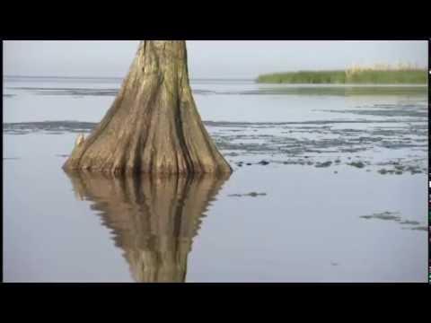 AMERICA'S AMAZON FULL DOCUMENTARY