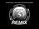 BAD BOYS BLUE - HOW I NEED YOU (STUDIO ((S)) REMIX)mp3
