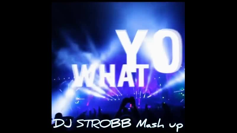 David GuettaMartin GarrixTom Baker-Like I Do(DJ STROBB Mash up)