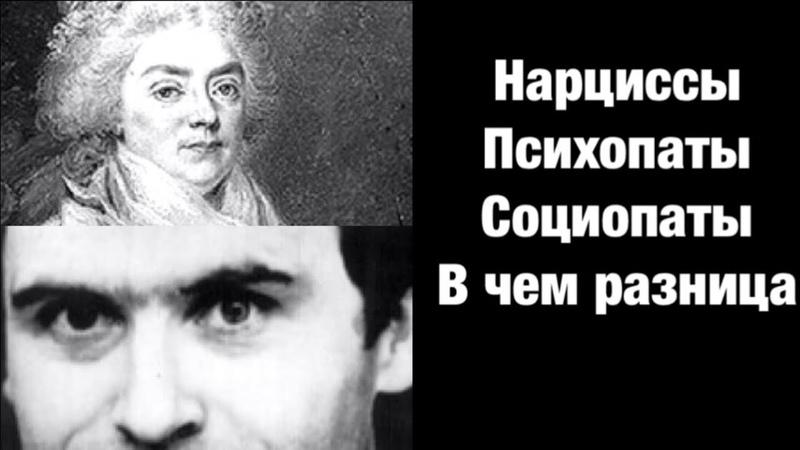 Нарциссы Психопаты Социопаты В чем разница