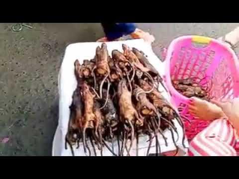 Mercado de Wuhan na China aonde surgiu o Corona Vírus