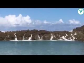 Massive Waves at Playa Puerto Nuevo in Vega Baja - Puerto