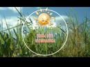 Любовь Кутузова - Лето -это маленькая жизнь!