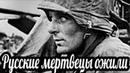 Русские мертвецы ожили Воспоминания Хельмута Фихта Битва за Севастополь военные истории
