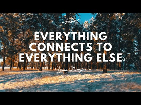 Yann Dengler Everything Connects to Everything Else Music Video