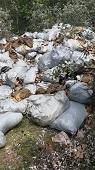 Средства химзащиты брошены в лесу