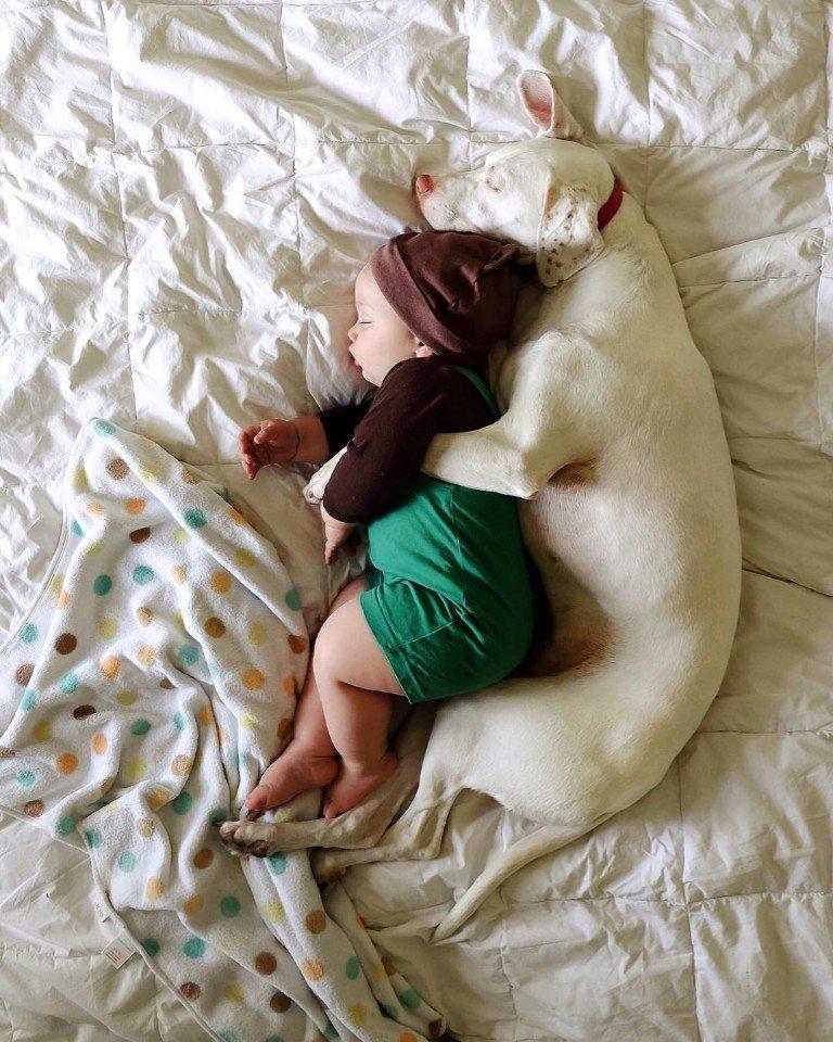 нашем фото спящих реал самая простая схема