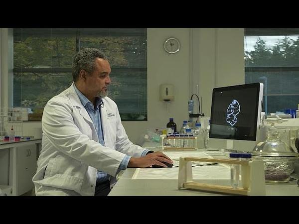 ДНК нанотехнологии бесконечный мир возможностей
