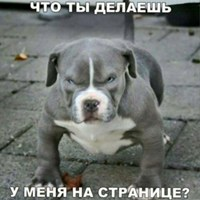 Фотография Айлана Абакаева