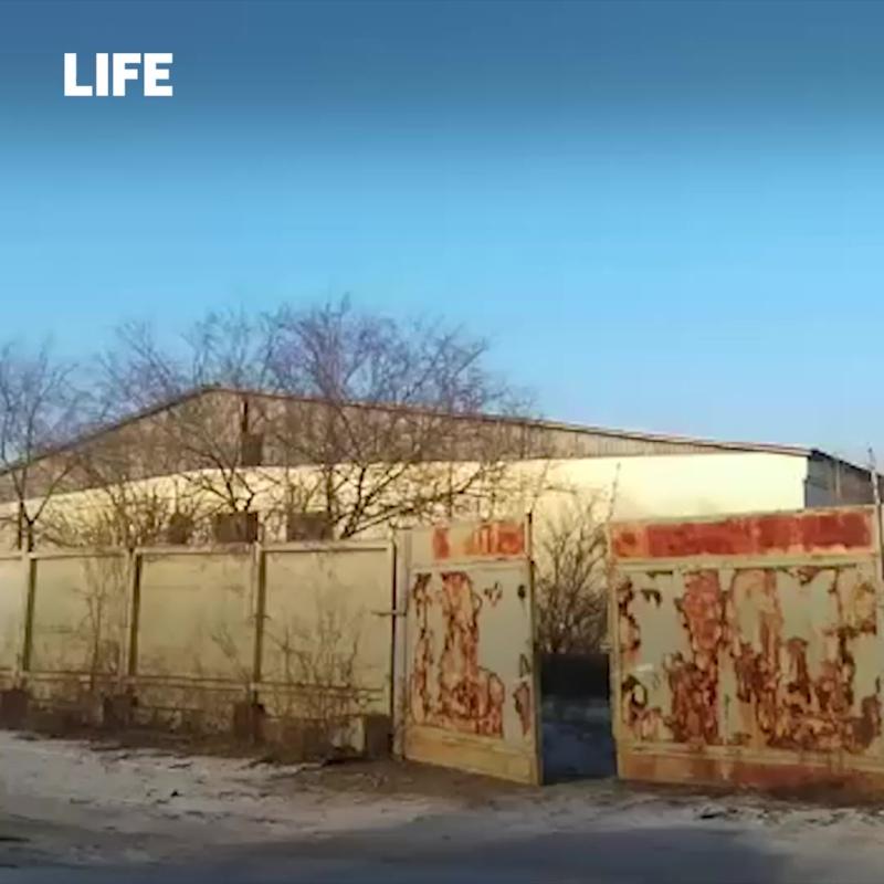 Семью маугли нашли  в Чите