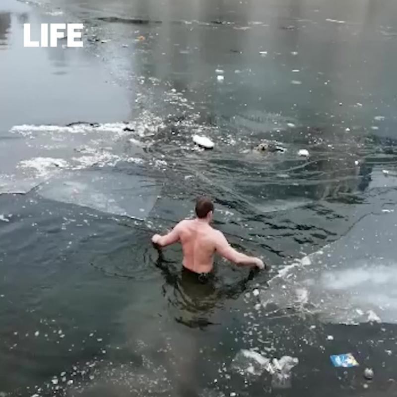 Астраханец спас собаку из ледяной реки
