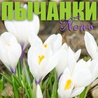 Логотип Пычанки News