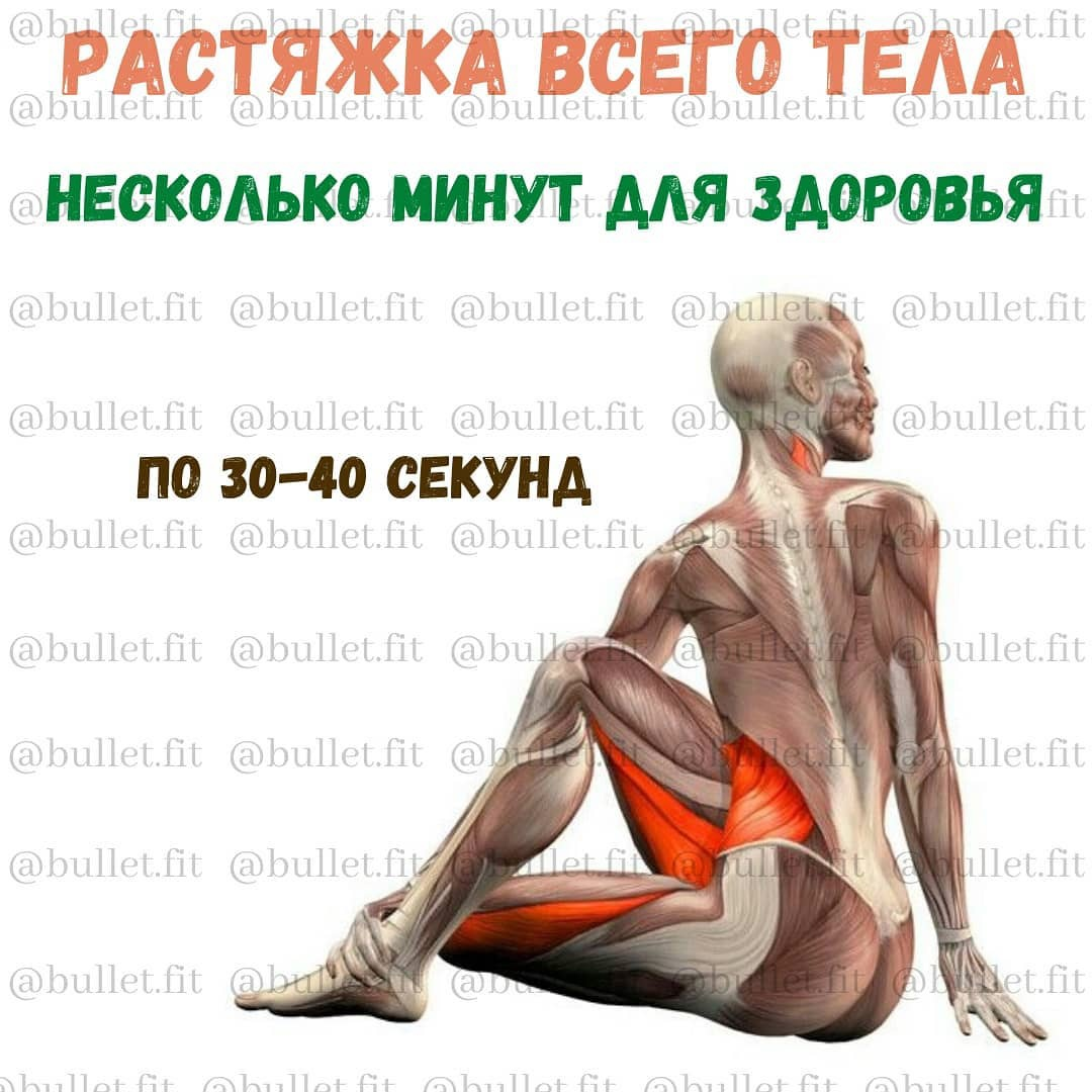Быстрая растяжка на все тело, с помощью неё вы обретёте тело мечты