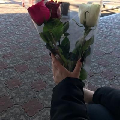 Дима Курский
