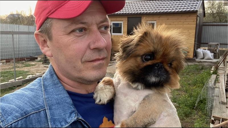 повезли ЧУДО в ветеринарку узнали кто ЭТО и что с ЧУДОМ