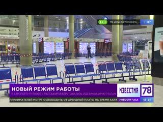 В Пулково у пассажиров берут анализы и дезинфицируют багаж