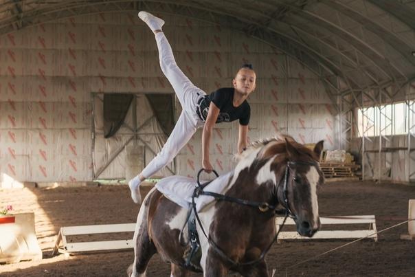 поздравление в конном спорте выше