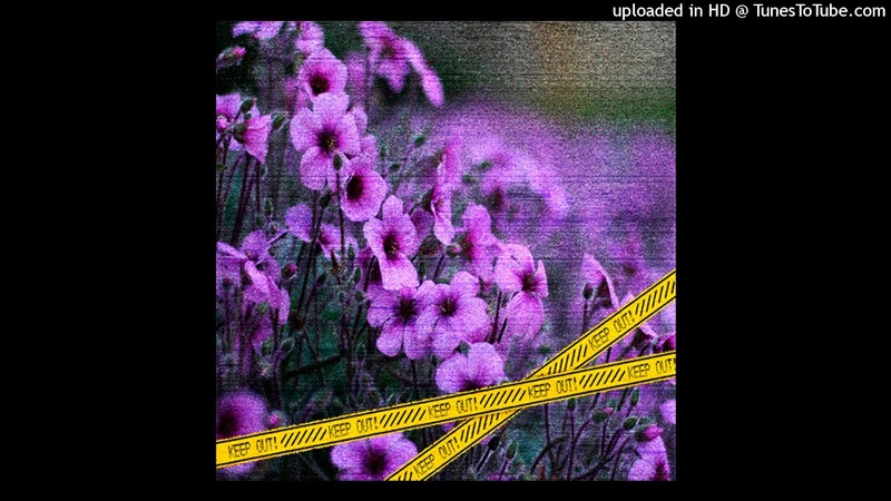FREE FLOWRENCY X SUCHY X GINSENG TYPE BEAT