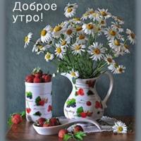 Фото профиля Алёны Фомченковой