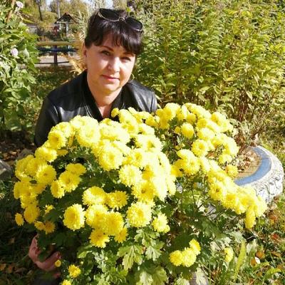 Елена, 46, Bezhetsk