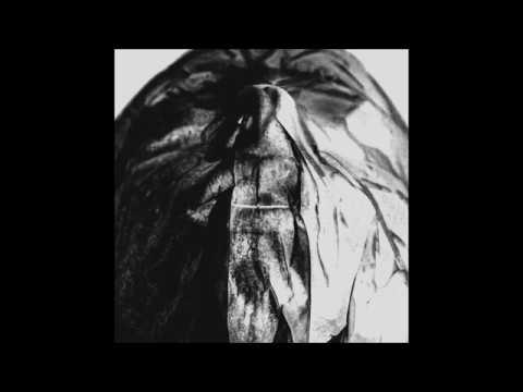 HØRD Parallels Full Album
