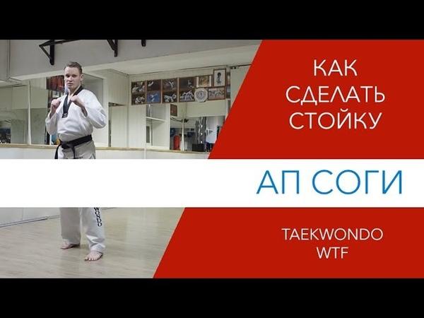 Стойка Ап Соги Taekwondo WTF