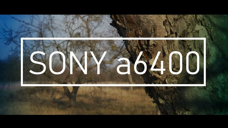 SONY a6400 cinematic (autofocus test) sigma 30mm f1.4