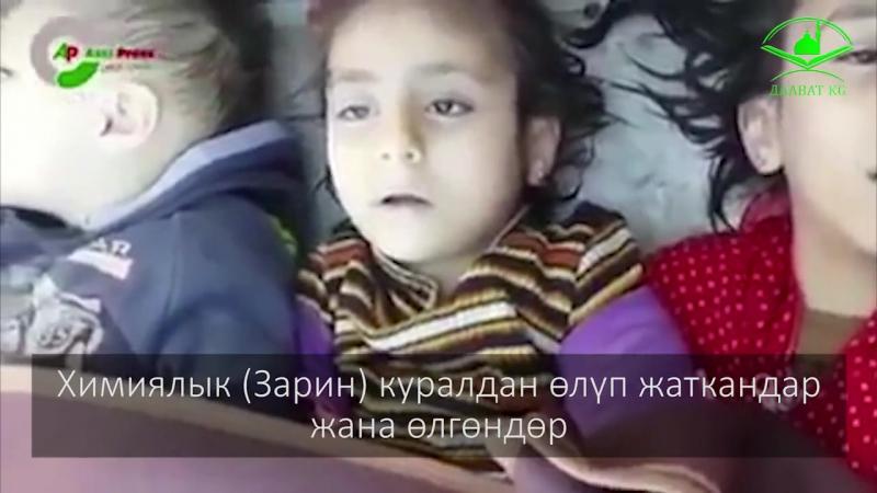 Сирияга жардам! 2017