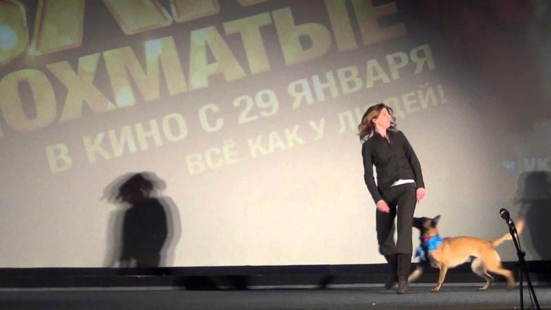 Елена Мурашова и малинуа Мейбл на премьере фильма Елки лохматые