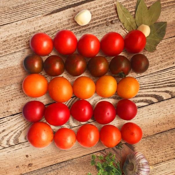 Мы собрали для вас лучшие коктейльные гибриды помидоров для консервирования  Лучшие гибриды помидоров для консервирования